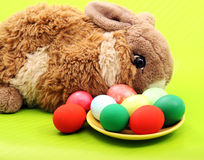 Easter rabbit with eggs on green Stock Photography