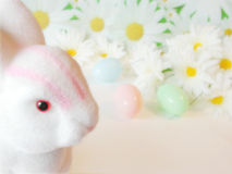 Easter rabbit and colorful eggs. White easter rabbit with colorful eggs in the background stock photography