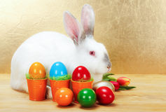 Easter rabbit with colorful eggs Stock Images