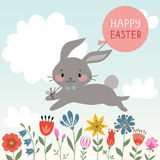 Easter rabbit Stock Images