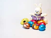 Easter rabbit and easter egges stock image