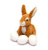 Easter rabbit and egg. Stock Images
