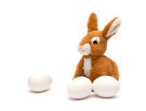 Easter rabbit and egg. Royalty Free Stock Images