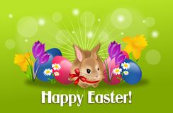 Easter rabbit with eggs and flowers background Stock Images