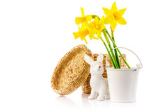 Easter rabbit eggs spring flowers narcissus Stock Image