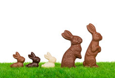 Easter rabbit family Royalty Free Stock Photography
