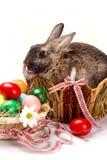 Easter rabbit Stock Photo