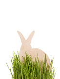 Easter rabbit on grass Royalty Free Stock Photos