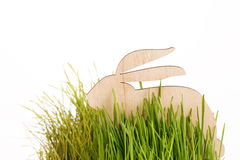 Easter rabbit on grass Stock Image