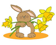 Easter Bunny. Hand drawn picture of a Easter rabbit holding daffodils, illustrated in a loose style. Vector eps available stock illustration
