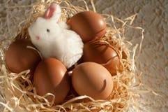 Easter rabbit inside a sieve full of easter eggs on rustic wood. En stock photos