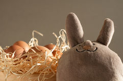 Easter rabbit inside a sieve full of easter eggs on rustic wood. En royalty free stock photography