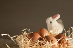 Easter rabbit inside a sieve full of easter eggs on rustic wood Stock Images