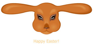 Easter rabbit muzzle Stock Images