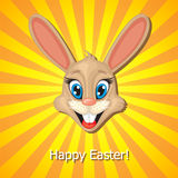 Easter rabbit muzzle Royalty Free Stock Image