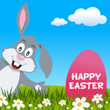 Easter Rabbit Smiling & Greeting Card Stock Photo