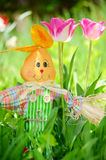 Easter rabbit in the spring garden Royalty Free Stock Photography