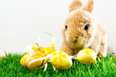 Easter rabbit on spring green grass Stock Photo