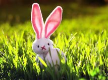 Easter with rabbit toy with egg on green juicy grass on spring meadow stock image