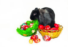 Easter rabbit and two baskets with Easter eggs Royalty Free Stock Photography