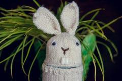Easter rabbit white made a gift of handmade Stock Photo