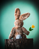 Easter rabbit with yellow tulip sitting alone on the stump. Stock Photos