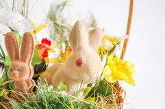 Easter rabbits and chicken Royalty Free Stock Photo