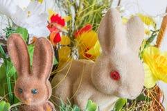 Easter rabbits closeup Stock Photo