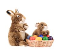 Easter rabbits and eggs Stock Images