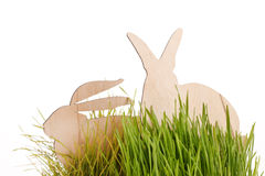 Easter rabbits on grass Stock Photography