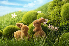 Easter rabbits Stock Image