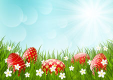 Easter red eggs on green grass Royalty Free Stock Images