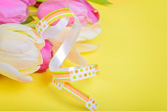 Easter ribbon with pink tulips Stock Photos