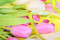 Easter ribbon with tulips Stock Photography