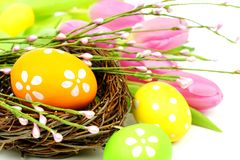 Easter scene with eggs and flowers Royalty Free Stock Images