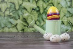Green watering can with Easter eggs, against green background stock photo