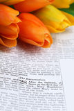 Easter scripture in Matthew 28. Open Bible with selective focus on the text in Matthew 28 about Jesus' resurrection. Shallow DOF Stock Images
