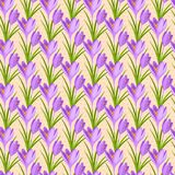 Easter seamless pattern with crocuses Royalty Free Stock Photos