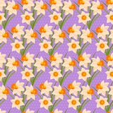 Easter seamless pattern with daffodils Stock Photos