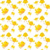Easter Seamless Pattern With Yellow Chicken On White Background. Vector Illustration Royalty Free Stock Photos