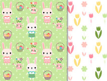 Easter seamless patterns with bunnies, flowers Stock Images