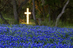 Easter season. Texas blue bonnet field in front of a lited Christian Cross in the late day springtime light shining between Texas live oak trees stock images