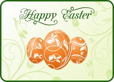 Easter set eggs on floral background Stock Images