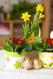 Easter Setting Royalty Free Stock Photo