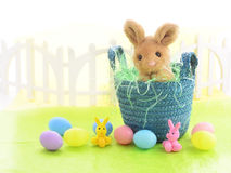 Easter setting Royalty Free Stock Images