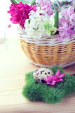 Easter setting - quail eggs and hyacinth flowers Royalty Free Stock Photos