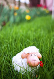 Easter Sheep. Funny white easter sheep in the garden grass Royalty Free Stock Image