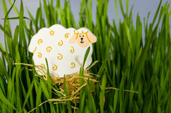 Easter sheep concept Royalty Free Stock Image
