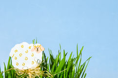 Easter sheep decoration in grass over blue background Stock Photos