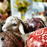 Easter sheep eggs and cards. Artistic look in vintage vivid colours. Royalty Free Stock Photography